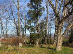 Gipe Grove Cemetery (old)