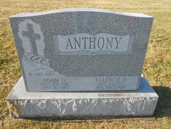Adam N Anthony