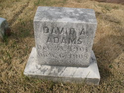 David A. Adams