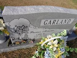 Carl Roosevelt Garland