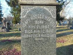 Asaph Hodges Webster