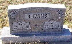 Opal <i>Jenkins</i> Blevins