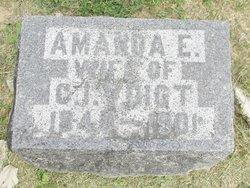 Amanda Ernestine <i>Walk</i> Voigt