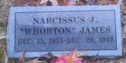 Narcissa <i>Wharton</i> James