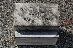Nancy Elizabeth Nannie <i>Posey</i> Avant