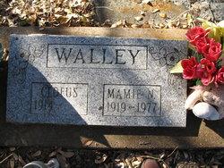Mamie N Walley