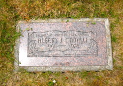 Albert J. Camilli