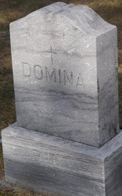 Orcelia Mae <i>Stetson</i> Domina