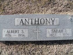 Albert Sidney Anthony