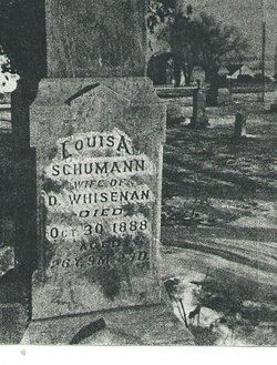 Louisa <i>Schuman</i> Whisennand