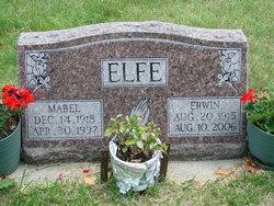 Erwin Roy Elfe