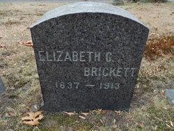 Elizabeth J. G. <i>Allen</i> Brickett