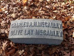 Col Charles Adam Hoke McCauley