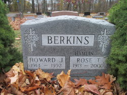 Howard J Berkins