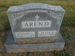 Peter P Arend