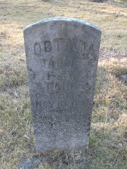 Octavia Stanley