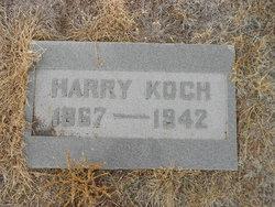Hotze Harry Koch