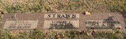 Eliza Jane <i>Daly Redmond</i> Strawn