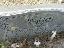 Teresa Ann Biggers
