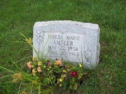 Teresa Marie Amsler