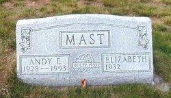 Andrew E Andy Mast