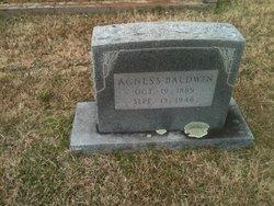 Agnes S Baldwin