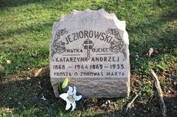 Andrzej Andrew Jeziorowski