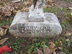Kathy Gail Cheatwood