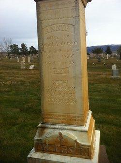 Annie Catherine <i>Larsen</i> Anderson