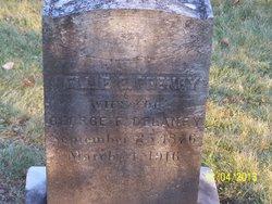 Nellie E. <i>Feeney</i> Delaney
