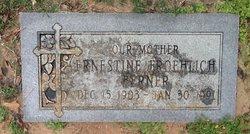 Ernestine <i>Froehlich</i> Berner