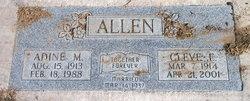Adine M. <i>Hinkley</i> Allen