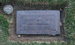 Dr Aldis Leroy Webb