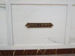 Charles Joseph Stebbins