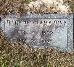 Tecoy Teco Ambrose