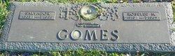 Roselee M. <i>Hamilton</i> Gomes