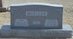 Iron Henry Dutch Mueller