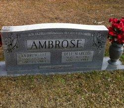 Andrew L Ambrose