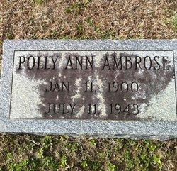 Polly Ann <i>Sawyer</i> Ambrose
