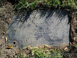 Norris Lee Artis, Jr
