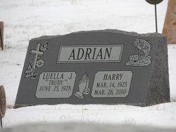 Harry Cornelius Adrian