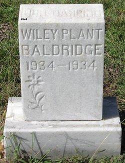 Wiley Plant Baldridge