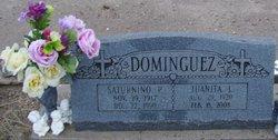 Saturnino P Dominguez
