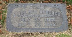 Alice M. <i>Hoyt</i> Babcock