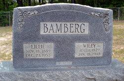 Lillie Lee <i>Lewter</i> Bamburg