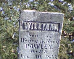 William Pauley