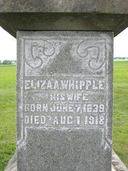 Eliza Ann <i>Whipple</i> Dales