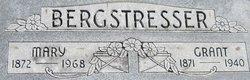 Ulysses Grant Bergstresser