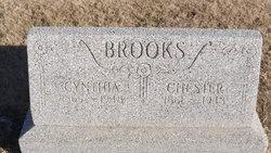 Cynthia Ann <i>Mitchell</i> Brooks