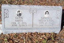 Glyn Ann <i>Helveston</i> Amos